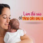 Thực đơn chuẩn tăng cân sau sinh tốt cho cả mẹ và bé